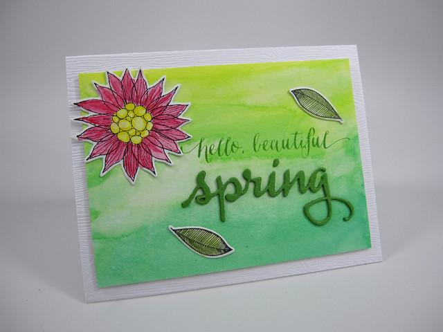Hello-Beautiful-Spring: SSSflickrchallenge#15