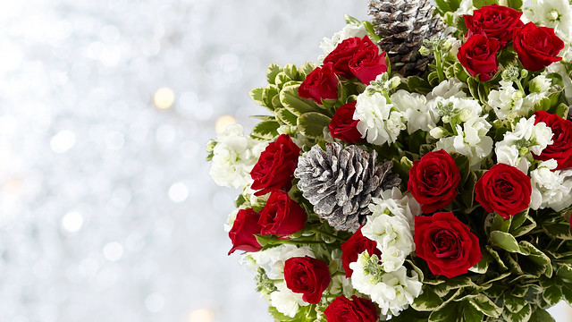 winter flower bouquet including red roses and pine cones