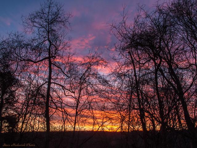 Glorious Sunrise_11592