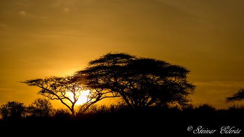 sunrise kenya samburu