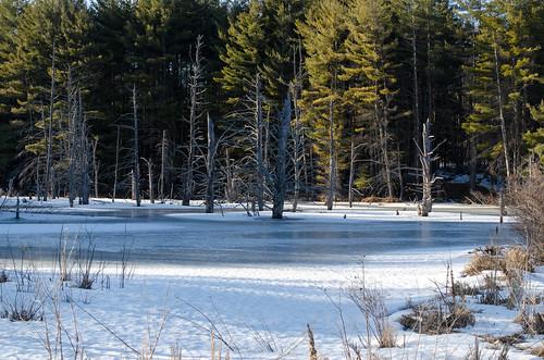 winter landscape columbiacounty d7000 handhollow dajewski nikkor1855mmf3556gafsdx gdajewski