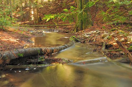 longexposure water washington kettlefalls stevenscounty