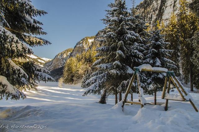 erikharstrom-Winter©2015-0016