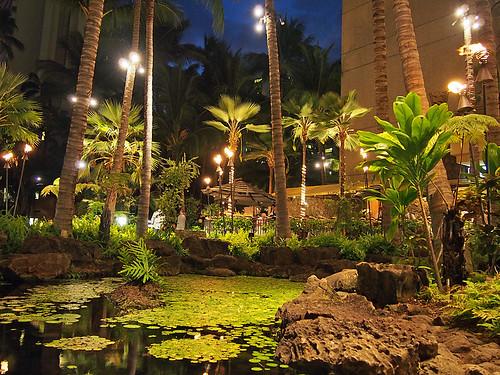 Honolulu -Joe 2 | by KathyCat102