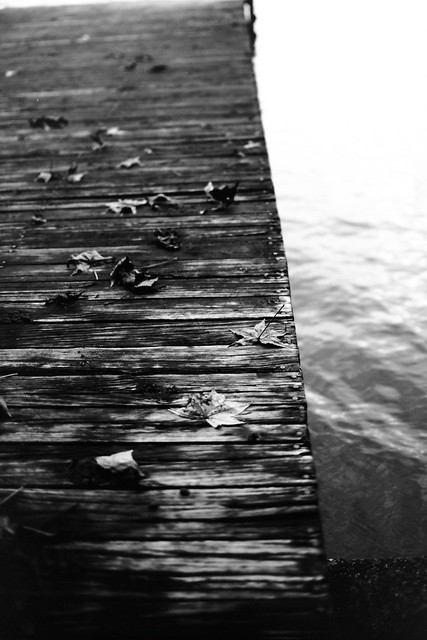 On the waterfront Nikon f100 35mm 1.8g  Fpp Eastman 5363 in t-max for 6 minutes