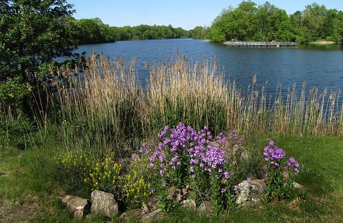 from lake view dam michigan newburgh livonia