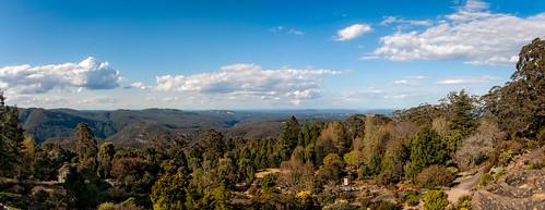 Mount Tomah Botanic Garden Panorama