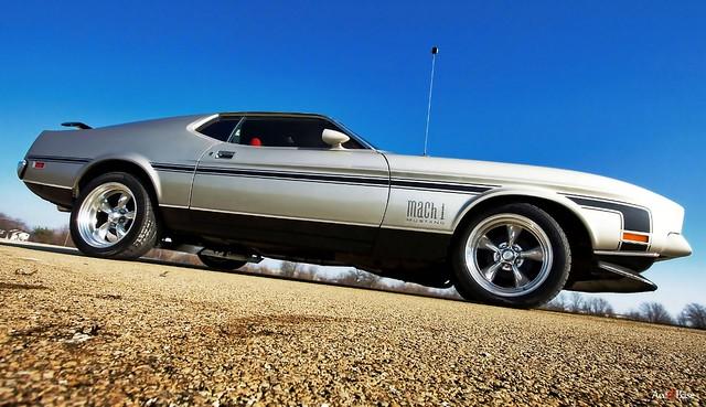 another random Mustang shot