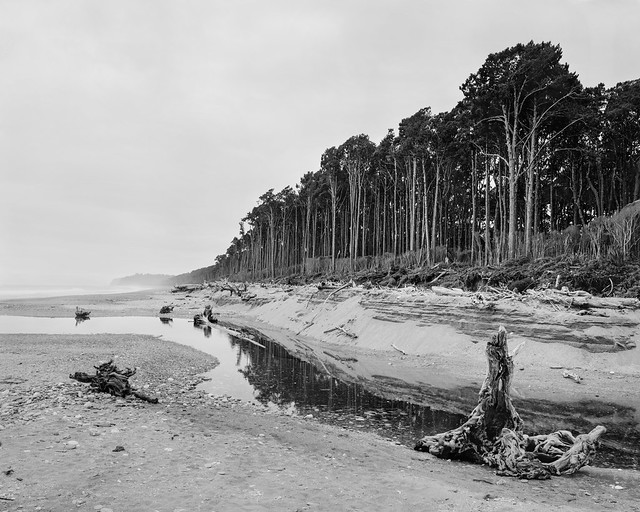 The Drift - Bruce Bay