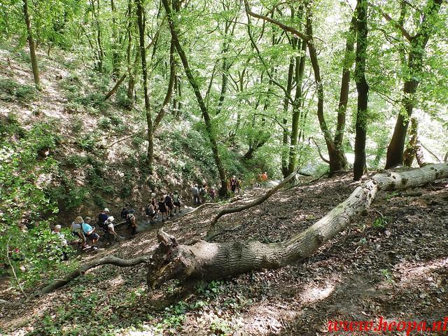 2016-05-11   Rhenen 25 Km (57)