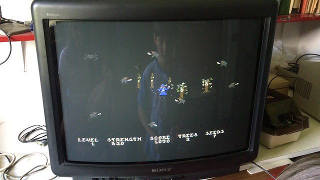 Tommaso playing Necromancer for the c64 on the c1228