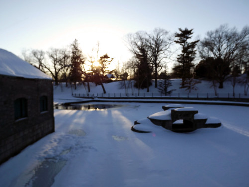 park trees winter sunset sky snow cold nature march pond wintersky rogerwilliamspark providencerhodeisland icywater winterscenery