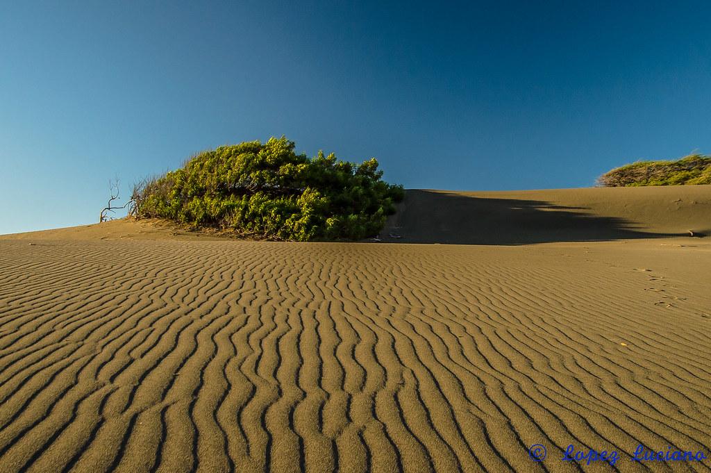 Resultado de imagen para las dunas de bani