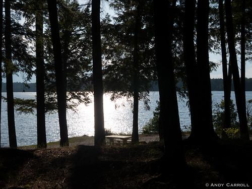 canada ontario silverlake andyscamera lake trees