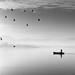 early bird II by Cem Bayir