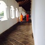 08 Viajefilos en Sri Lanka. Dambulla 33