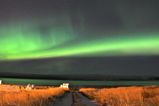 Aurora in Iceland