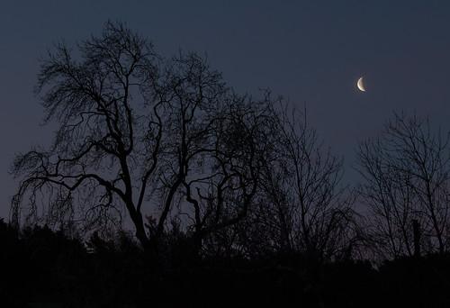 sky moon astrophotography handheld waningcrescent canon700d dslrsingleexposure