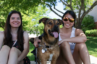 Open Streets, June 2016 | by City of Fort Collins, CO
