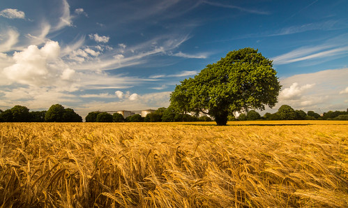 sky field corn cheshire little wheat dramatic crops filters sutton wirral eastham polarising ellesmereport 750d