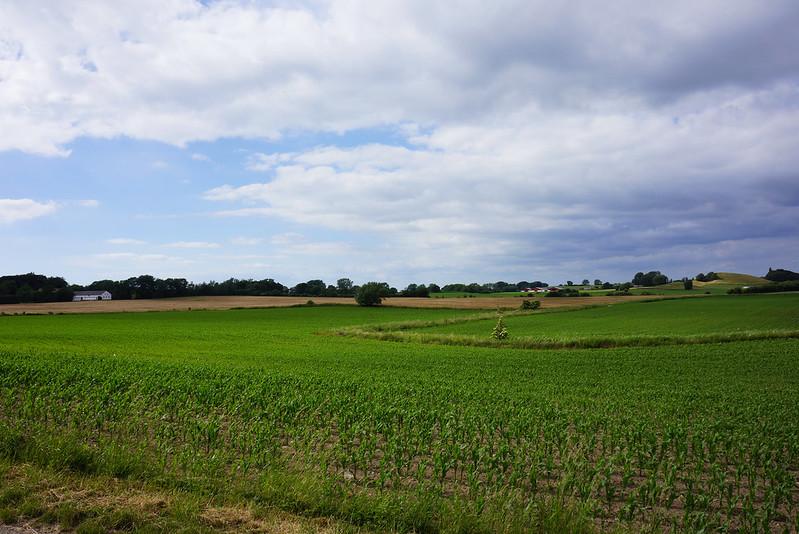 Udsigt-over-Tjoernbjerg-og-Rudbaekgaard