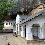 08 Viajefilos en Sri Lanka. Dambulla 05