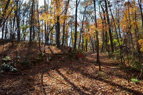 nature trail talkingrock carterslake