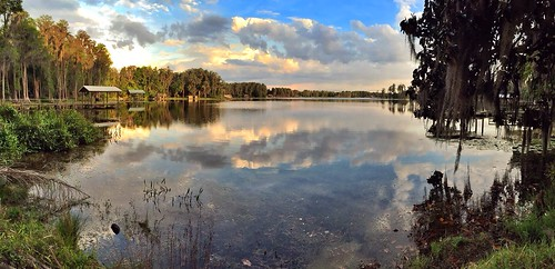 sunset lake spring florida odessa april lakealice 2015 iphoneography iphone6 snapseed