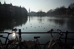 Hofvijfer, Den Haag
