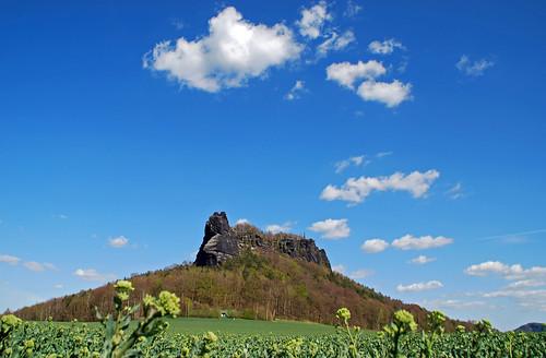 landschaft frühling lilienstein elbsandsteingebirge sandsteiner