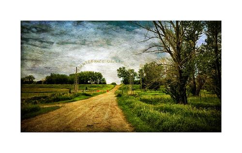 mystery landscape brandon manitoba dirtroad