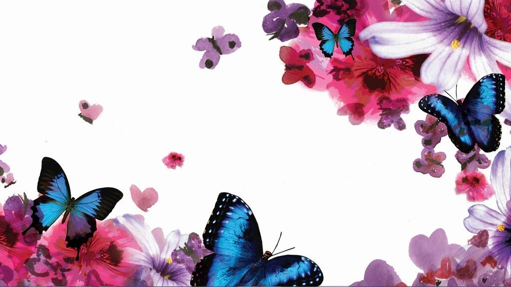 Hp Butterfly Blossoms Wallpaper 1 Cx11een Flickr