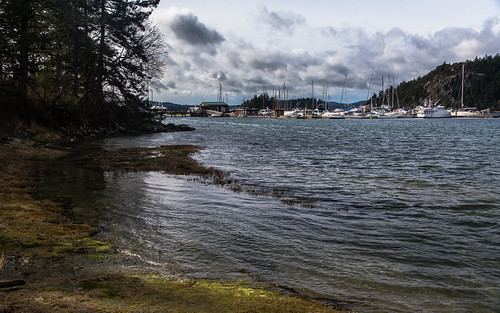 winter usa marina canon landscape washington day unitedstates cloudy pacificnorthwest orcasisland sanjuanislands washingtonstate eastsound deerharbor tamron2875mmf28 canon6d canoneos6d tamron2875mmf28xrdildasphericalifa09