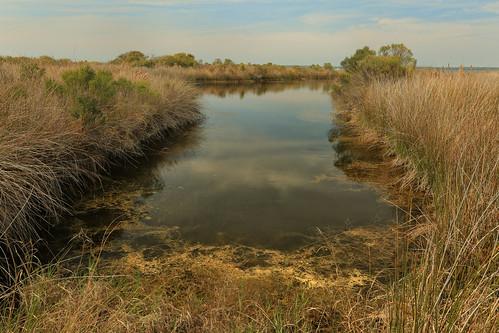 gulfislandsnationalseashore santarosaisland santarosasound freshwaterpond santarosaunit