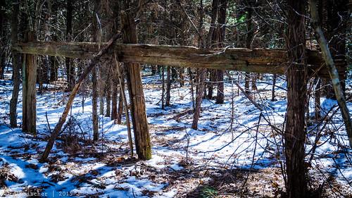 abandoned fence newjersey rust unitedstates rusty monmouthcounty fencepost rustyandcrusty howell inthewoods explored rustporn abandonednewjersey nikon18105mmf3556vr nikond7000 fencedfriday rustynewjersey northbranchmetedeconkriver victorswoods