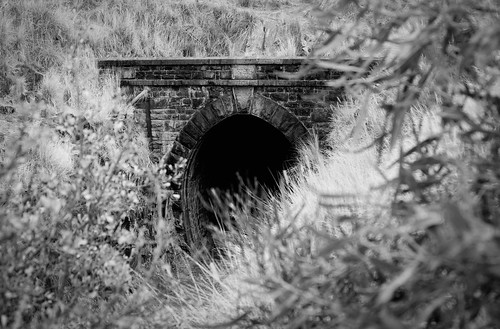 park john swan view forrest australia tunnel national perth western shire mundaring johnforrestnationalpark swanviewtunnel