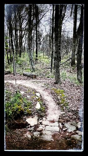 trees landscape woods path trail missouri stcharles app htc snapseed