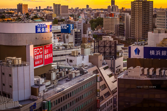 Yoko City Dawn