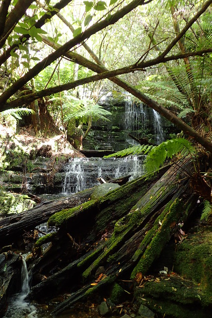 Myrtle Gully Falls