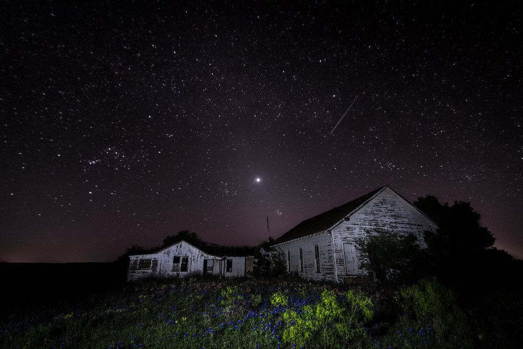 Stars, Bluebonnets and Abandonment's