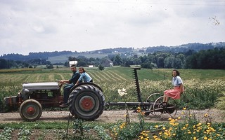 1956 mowing - Dalton, Ohio