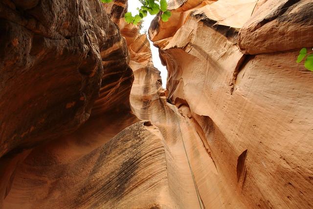 Yankie Doodle Canyon