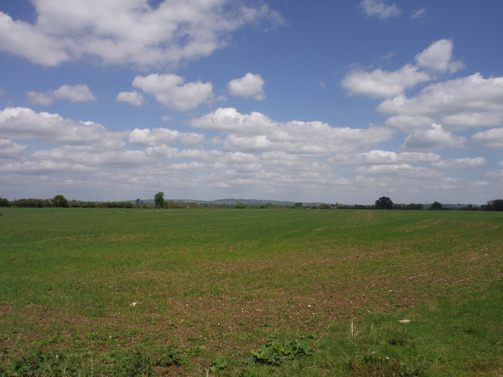 Far Views across field, Waterstock SWC Walk 190 - Thame Circular (Extension)