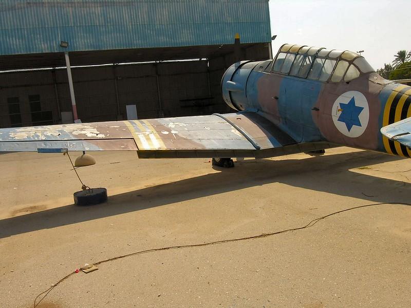 T-6 Harvard 31