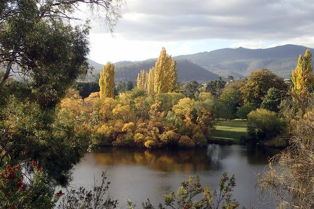 Autumn Colours - New Norfolk -