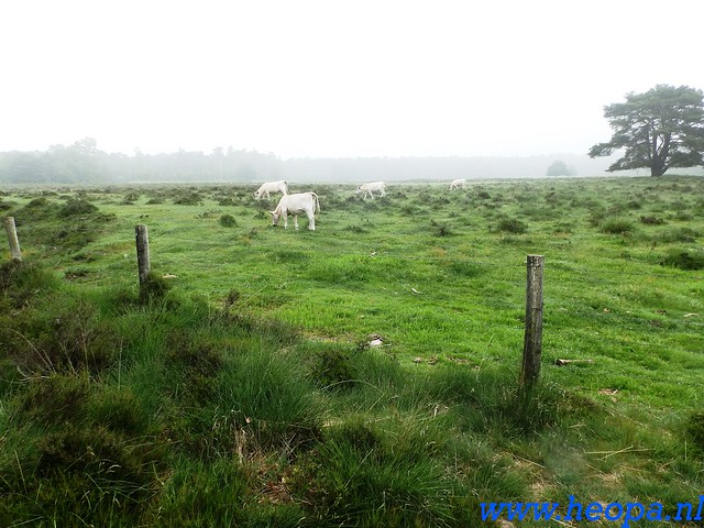 2016-06-04  KIWANIS Paleizen wandeltocht 36 Km  (49)