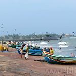 01 Viajefilos en Sri Lanka. Negombo 19