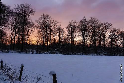 belgium hiver neige bel wallonie bambësch parette carygreisch