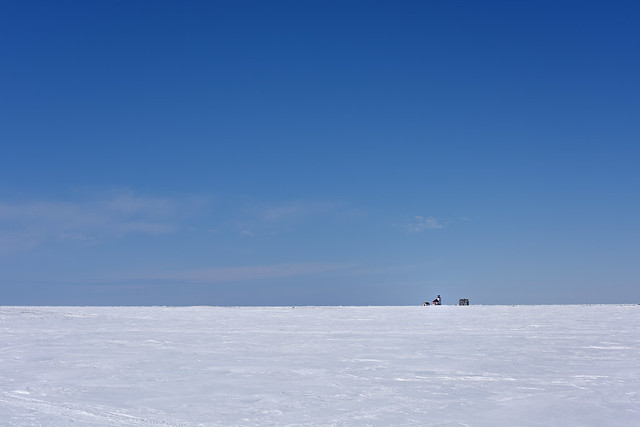 Deserted Sentinel