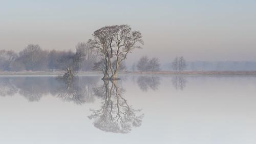 morning sunset nature water fog germany landscape deutschland nikon wasser nebel outdoor natur h landschaft f8 sonnenaufgang morgens niedersachsen d810 fantasticnature blende8 nikond810 thisphotorocks beyondbokeh sigma120300f28oshsmsport timokahrs